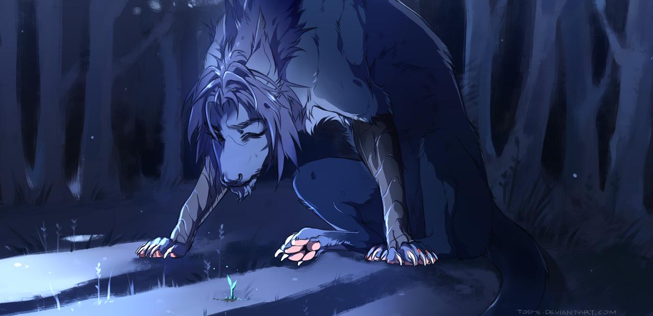 black anime wolves www