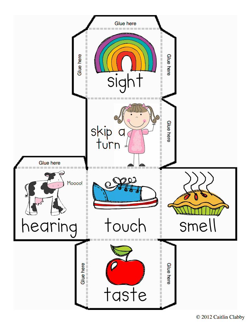 five senses dice and recording sheet free 5 senses preschool theme