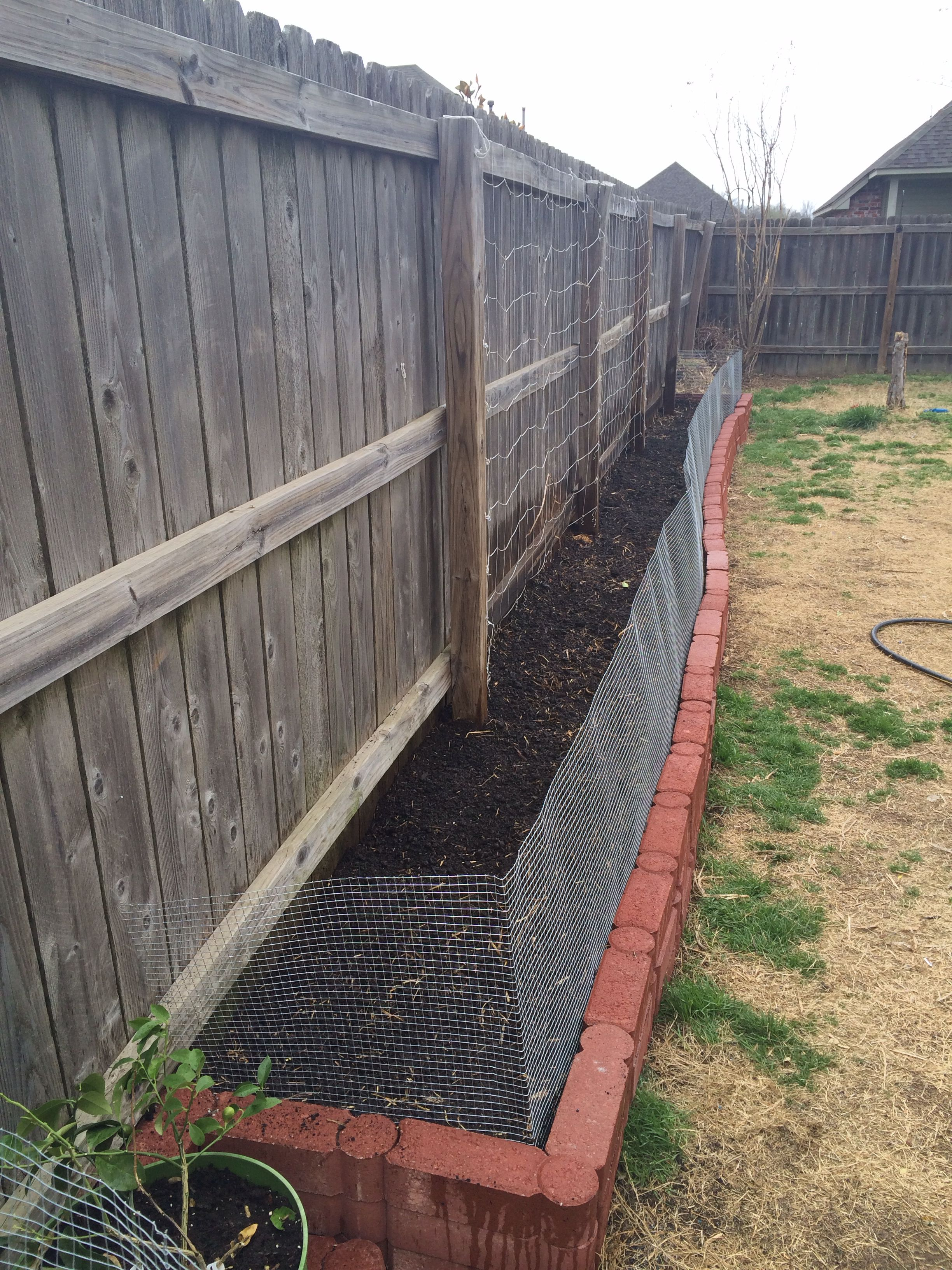 Garden Year 3: dog proof garden fence | Garden/Earth ...