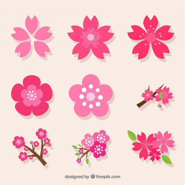 Download Decorative Pack Of Variety Of Cherry Blossoms For Free Cherry Blossom Art Flower Icons Flower Template