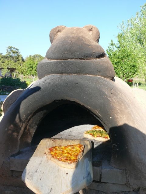 DIY Cob Oven Project-Outdoor Pizza Oven- Build Your Own ...