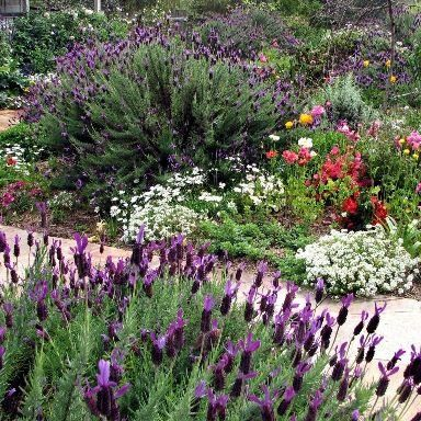 Here's how to build healthy soil in your garden.