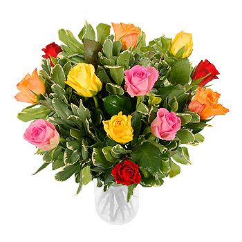 Uk flowers a dozen mixed roses send flowers to uk pinterest uk flowers a dozen mixed roses negle Choice Image