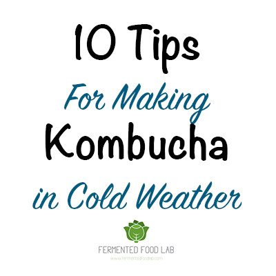 10 Tips For Making Kombucha In Cold Weather - Fermented Food Lab