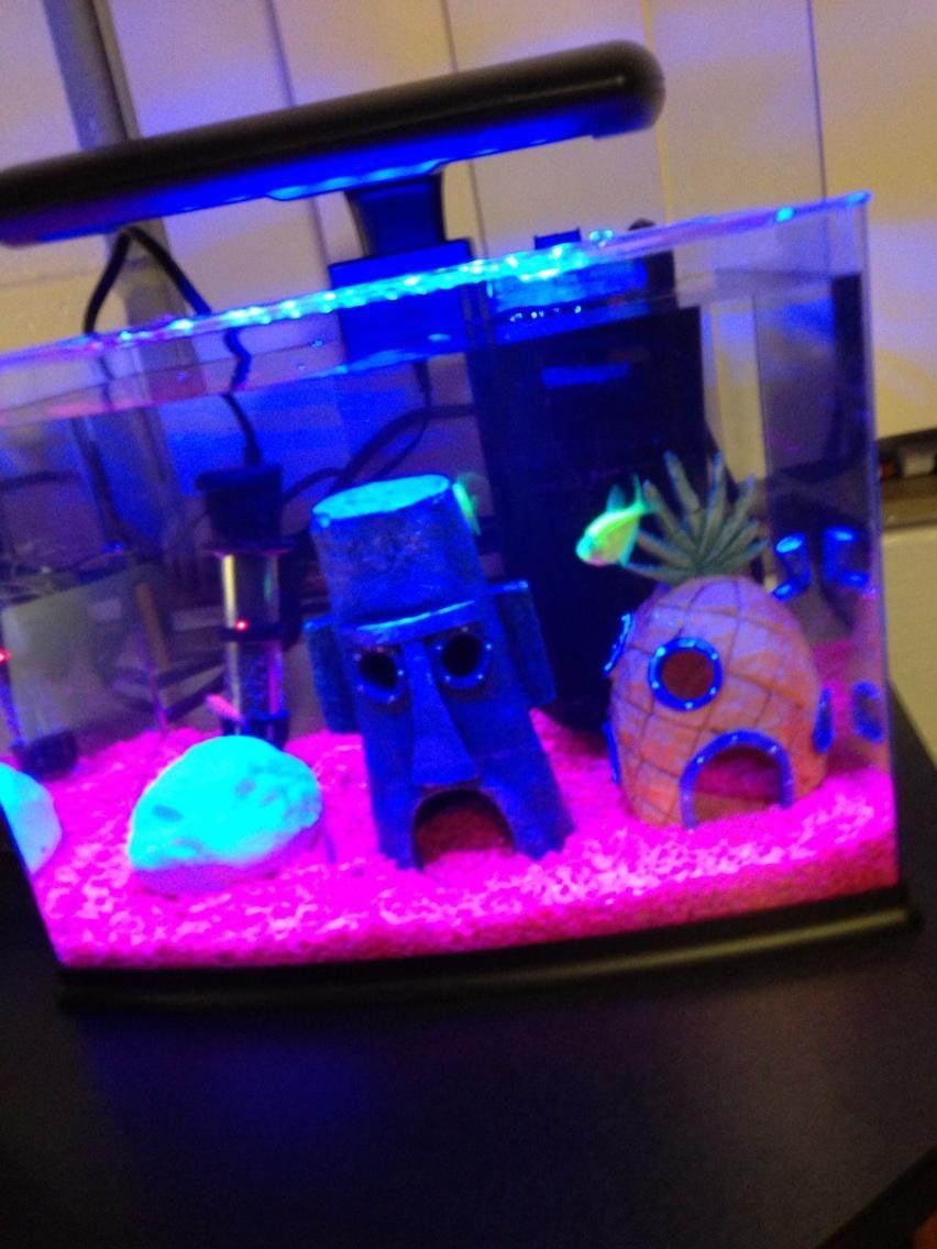 Fish aquarium in bedroom - Great Idea For A Fish Tank Go To Www Likegossip Com To
