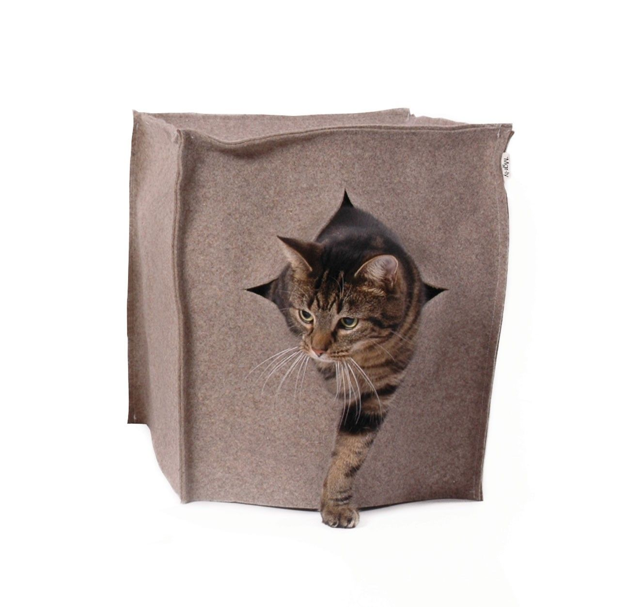 Cat's in Style Designer dog collars, Cats, Litter box covers