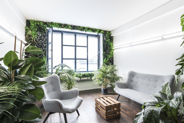 Urban Jungle in Deinen Räumen. Durch eine Dschungelwand verwandelt ...