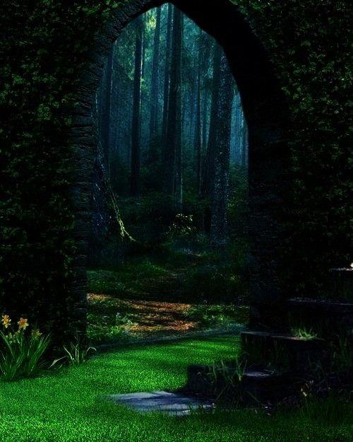 The Enchanted Wood  Come my frien  garden door portalForest Portal  The Enchanted Wood  Come my frien  garden door portal DreamsTravel WorldWides dreamstravelblog  Photo...