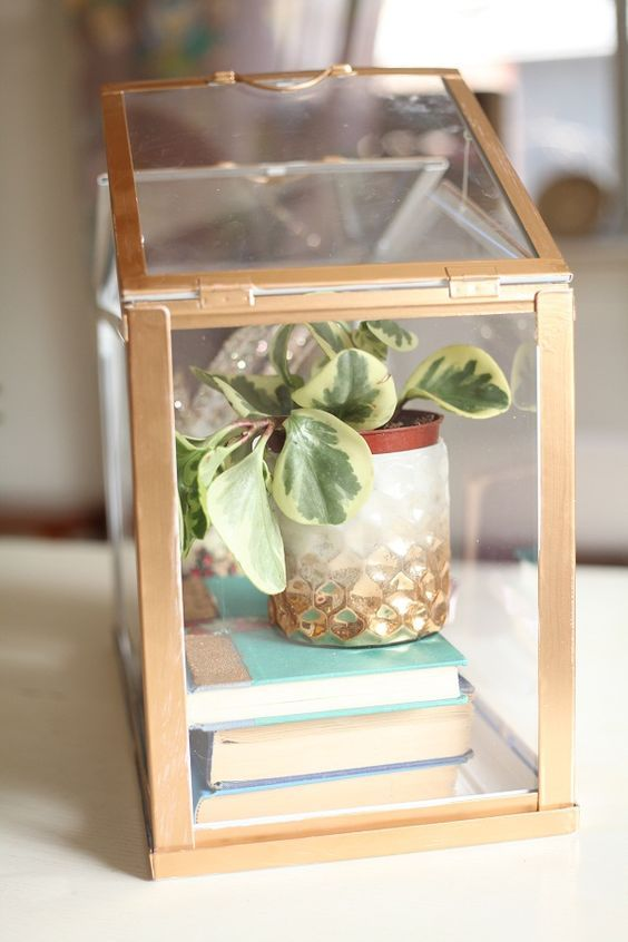 DIY Gold Mini Greenhouse From Ikea