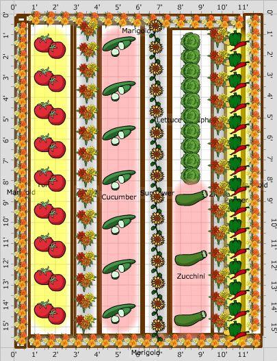 Vegetable Gardening For Beginners With Images Vegetable Garden