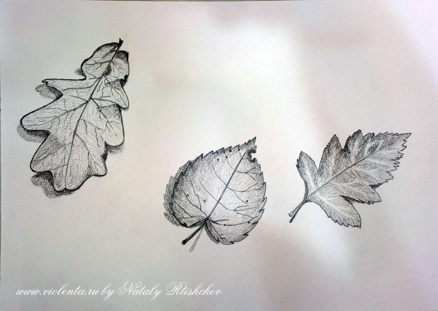 картинки карандашом наброски