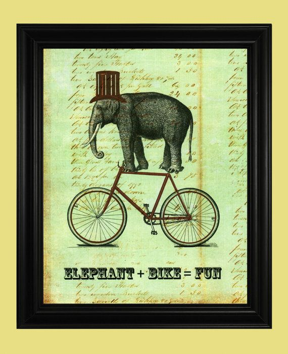 Elephant Art Circus Elephant on Bicycle door TheSpottedBlackbird, $12.00