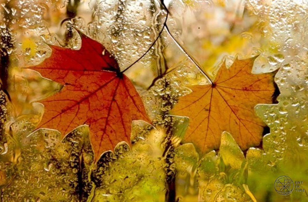 картинки с дождем осень