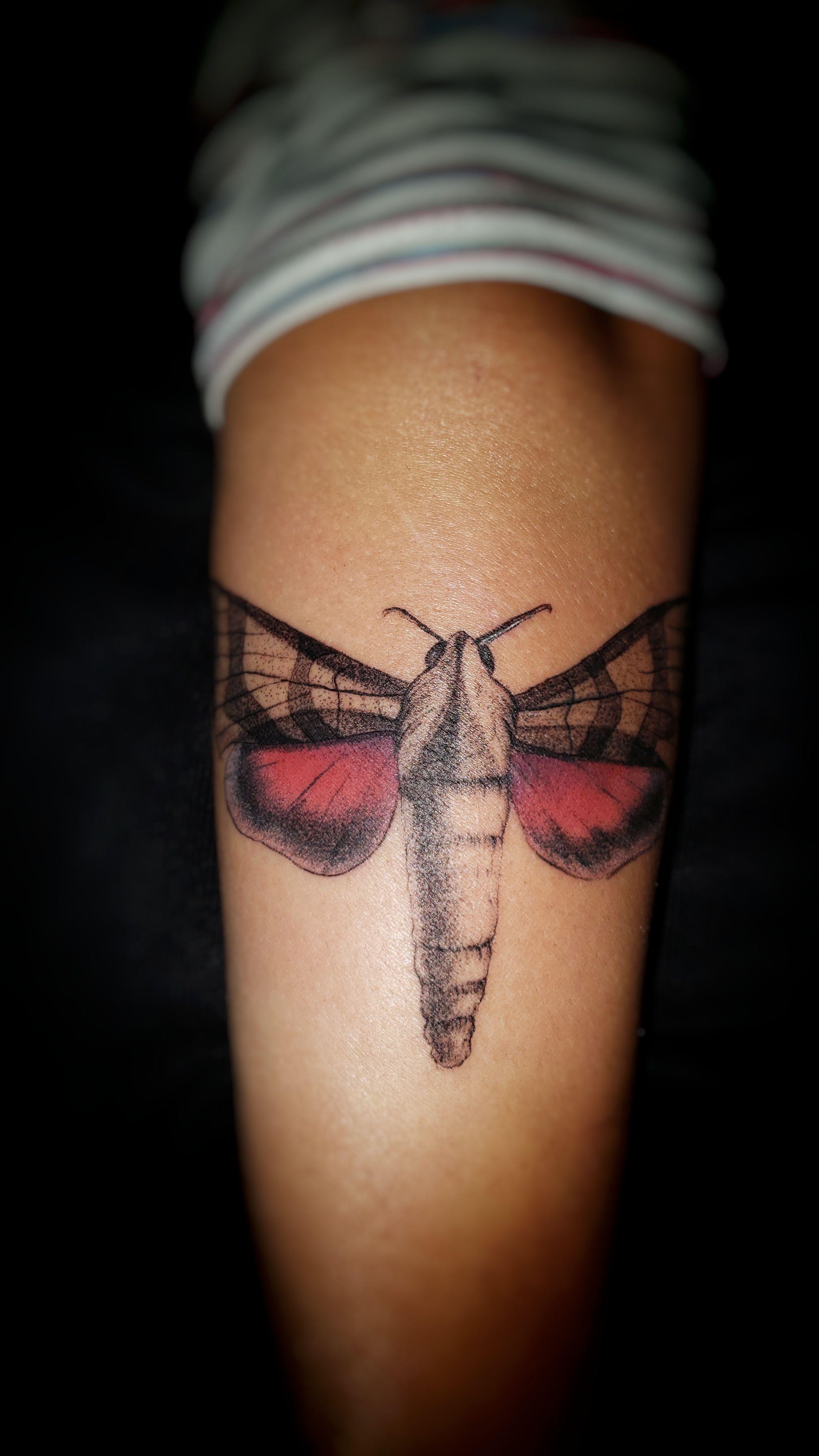 Moth by Ramón Villalobos San José Costa Rica tattoos