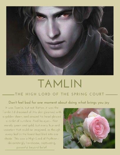 Tamlin Character Biography Acotar Sarah J Maas Books Book Of Life