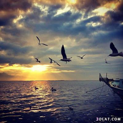 صور البحر 2020 خلفيات بحر