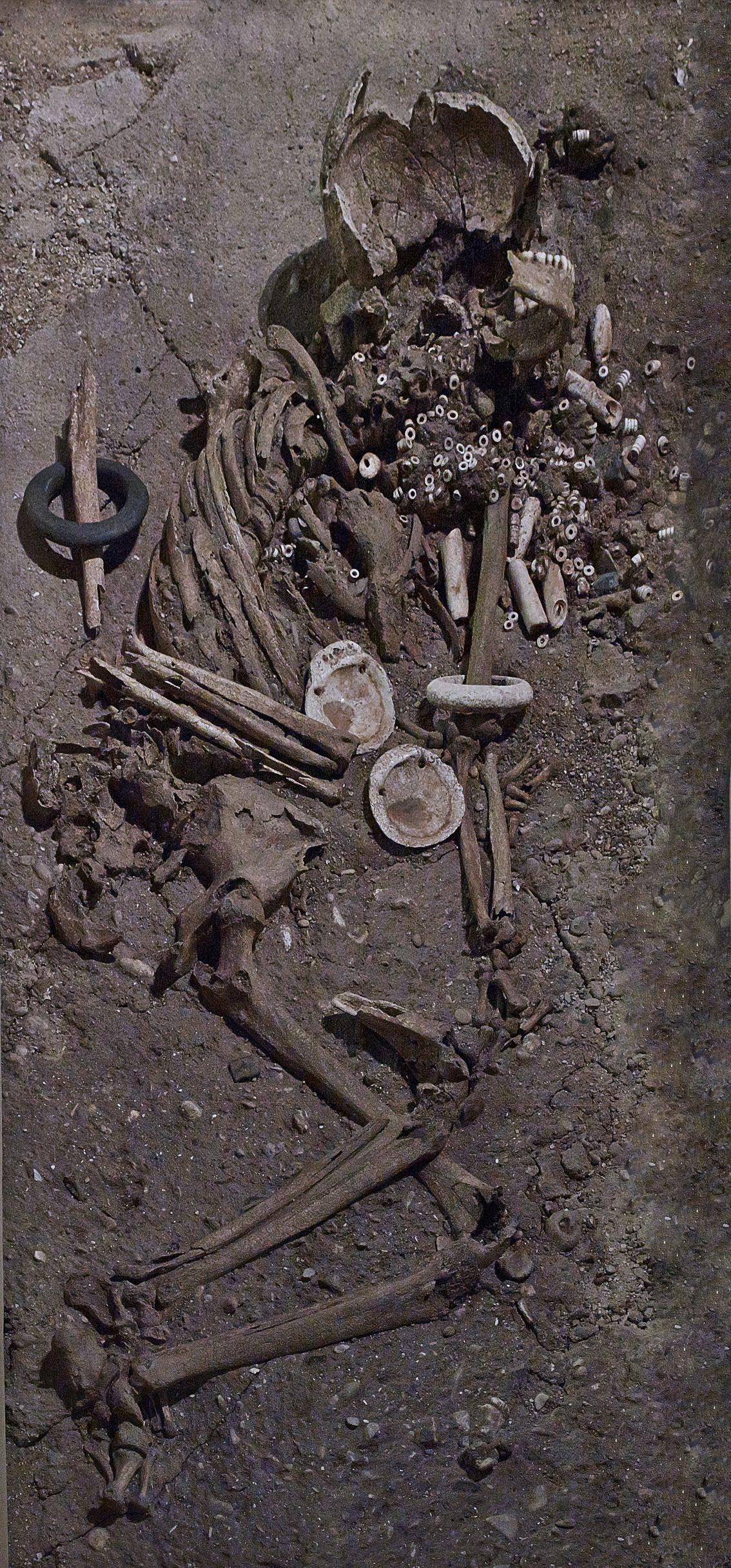Mars 2017 : Tombe féminine du Néolithique ancien à Cys-la-Commune (Aisne). © MAN / V. Gô