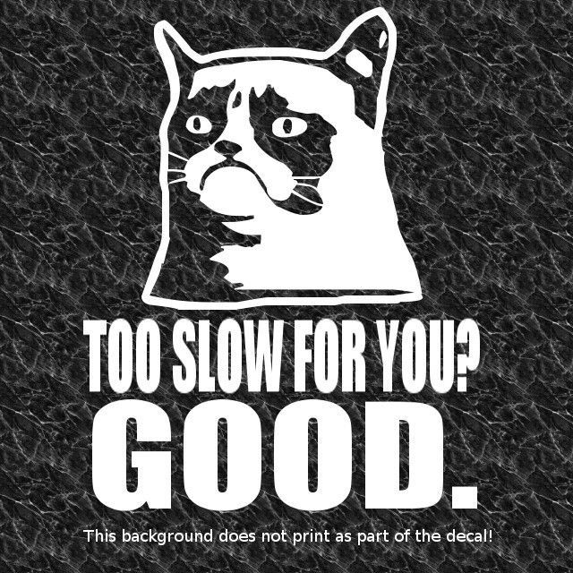 GRUMPY CAT TOO SLOW GOOD DECAL STICKER HATE BAD DRIVERS TAILGATING ANGRY DRIVING