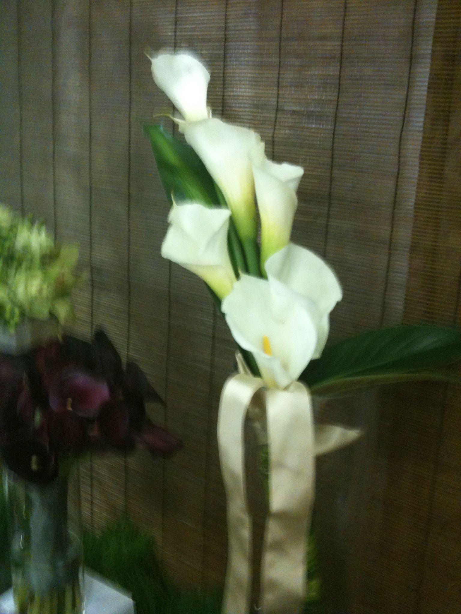 White Long Stem Calla Lily Arm Bouquet White Weddings Pinterest