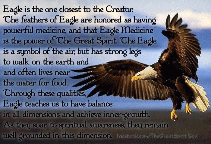 Meaning Of Eagle Sayings Pinterest Eagle And Spiritual