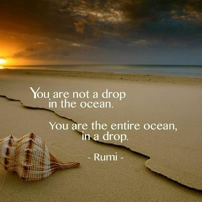 """""""You are not a drop in the ocean. You are the entire ocean, in a drop."""" --Rumi"""