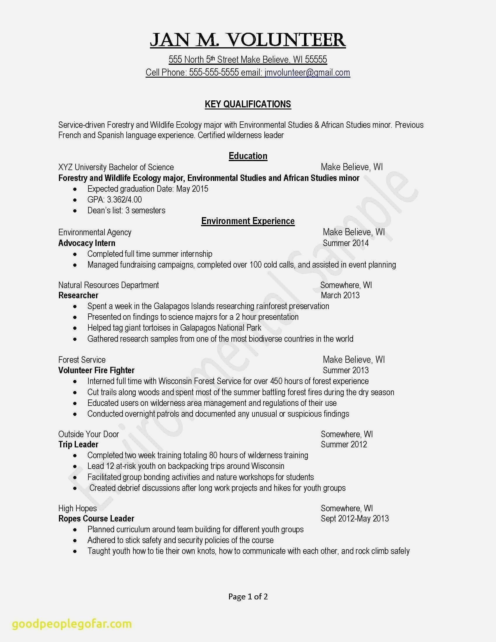 68 Elegant Photos Of Resume Profile Examples Information