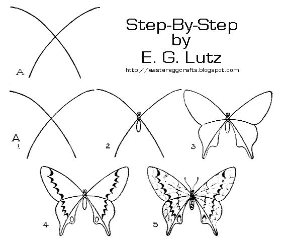 Step by step How To Draw A Butterfly Art Images Google