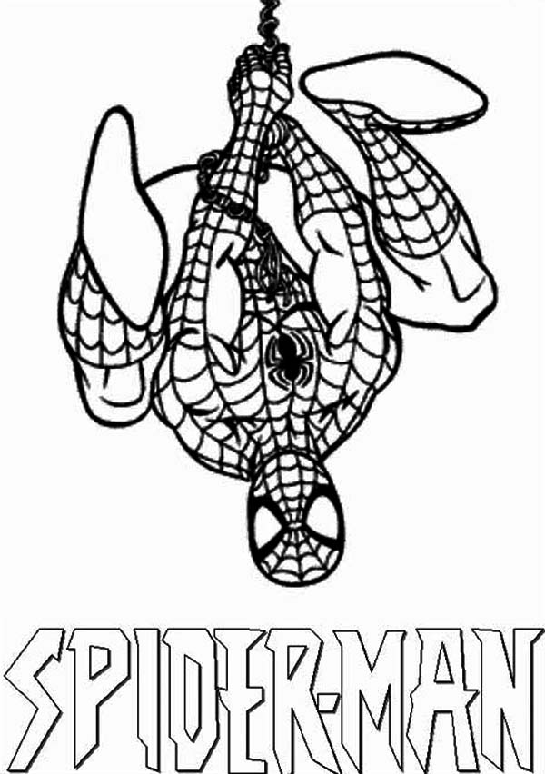 Amazing Spiderman Coloring Page Coloring Sun In 2021 Spiderman Coloring Amazing Spiderman Coloring Pages
