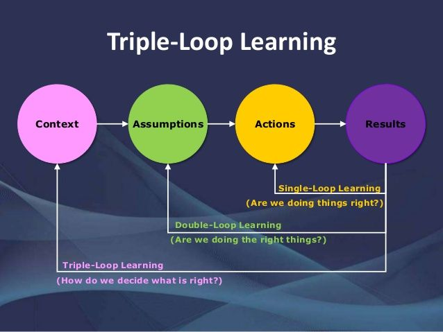 Single Double Triple Loop Learning Organization