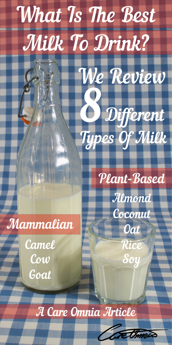 what is the best type of milk to drink