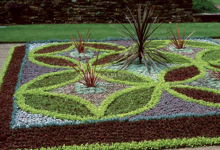 Parterre Of Alternathera Varieties With Sempervivum Arachnoides, Wisley,  RHS Gardens, Patterns Of Purple