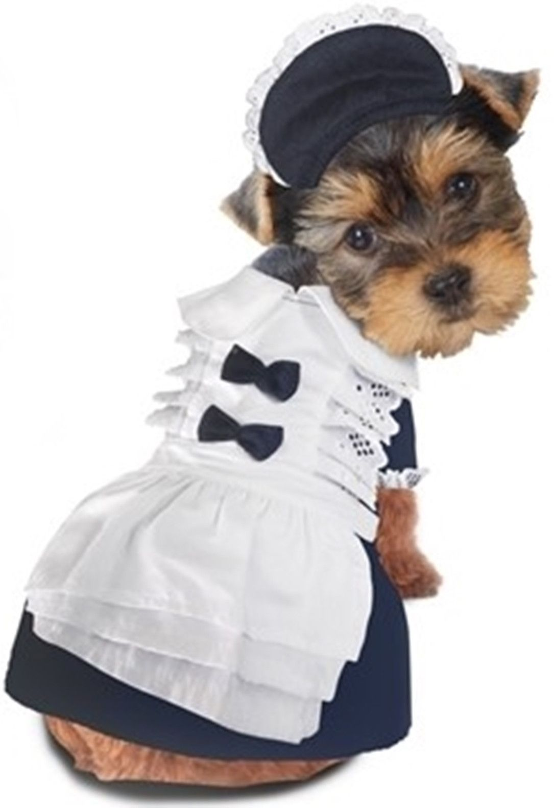 Classic French Maid Uniform With Bonnet Dog Costume French