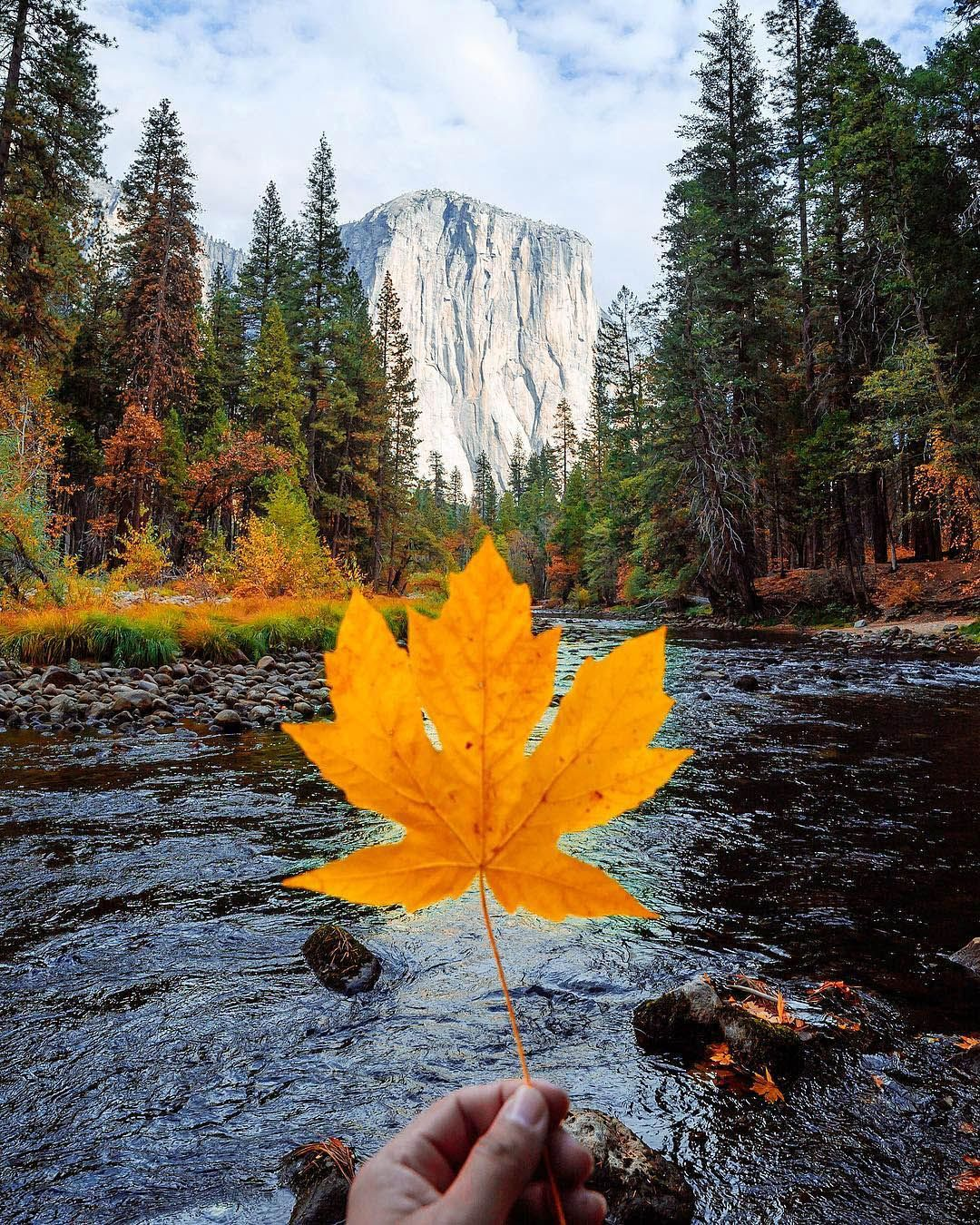 The Most Beautiful Places in Yosemite National Park   Great Camping Yosemite National Park Maps Of Hotels on map of map, map of grand canyon, map of myrtle beach,