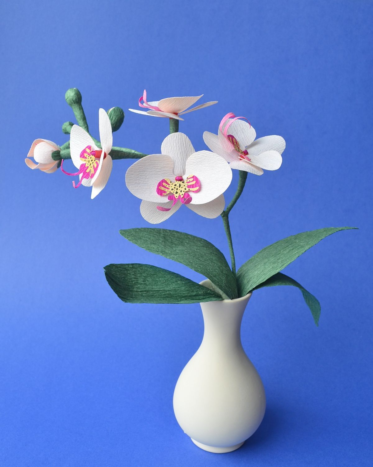 Pin By Diana Barrera On Flores Pinterest Flowers Craft And