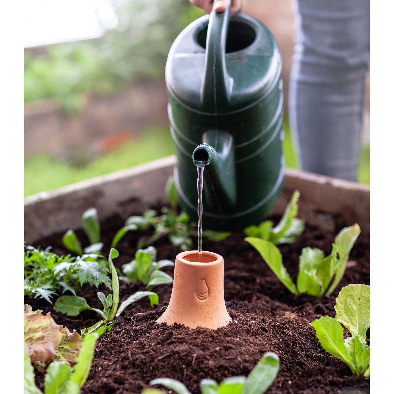 Pin Auf Gartendekoration Nachhaltiger Naturgarten