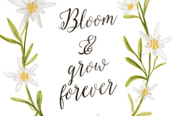 Bloom and Grow Forever, Edelweiss Art Print, The Sound of Music Floral Printable Quote, 8x10 Inspirational Quotes Wall Art, Instant Download #thesoundofmusic