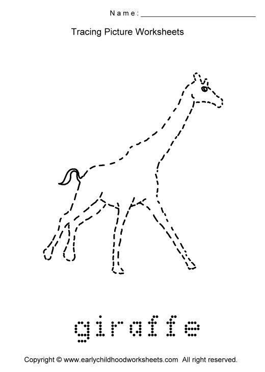 Tracing Giraffe Picture Tracing Pictures Animal Worksheets Worksheets Animal tracing for kindergarten