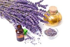Essential Oils such as Frankincense and Lemongrass have helped thousands to overcome Cancer. Read testimonials and BUY 100% GRADE essential oils here.
