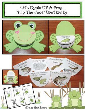Life Cycle Of A Frog Worksheet Kindergarten