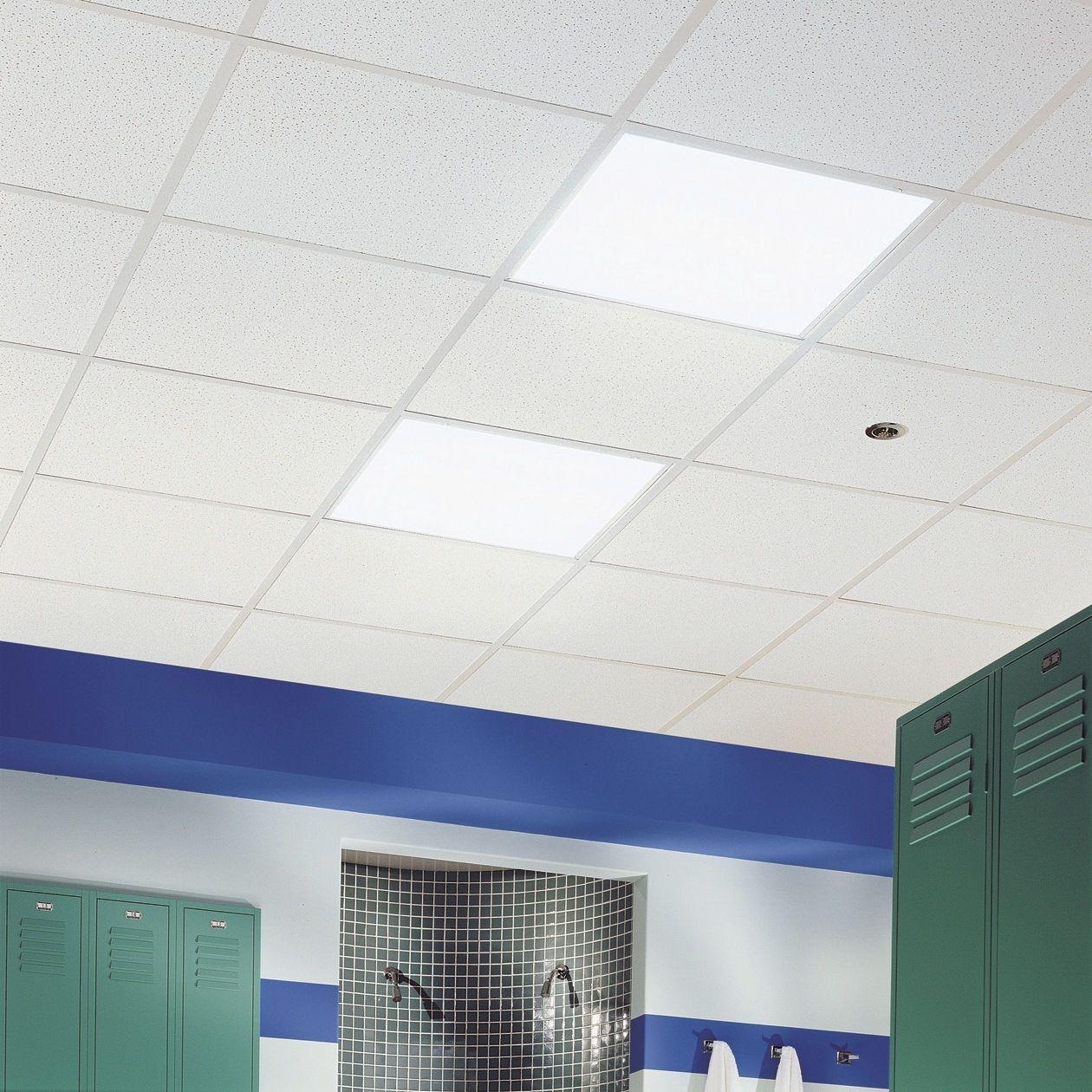 Do Ceiling Tiles Insulation Httpcreativechairsandtables