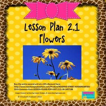 Flowers Editable Lesson Plan Lesson Plan Format Reading Street