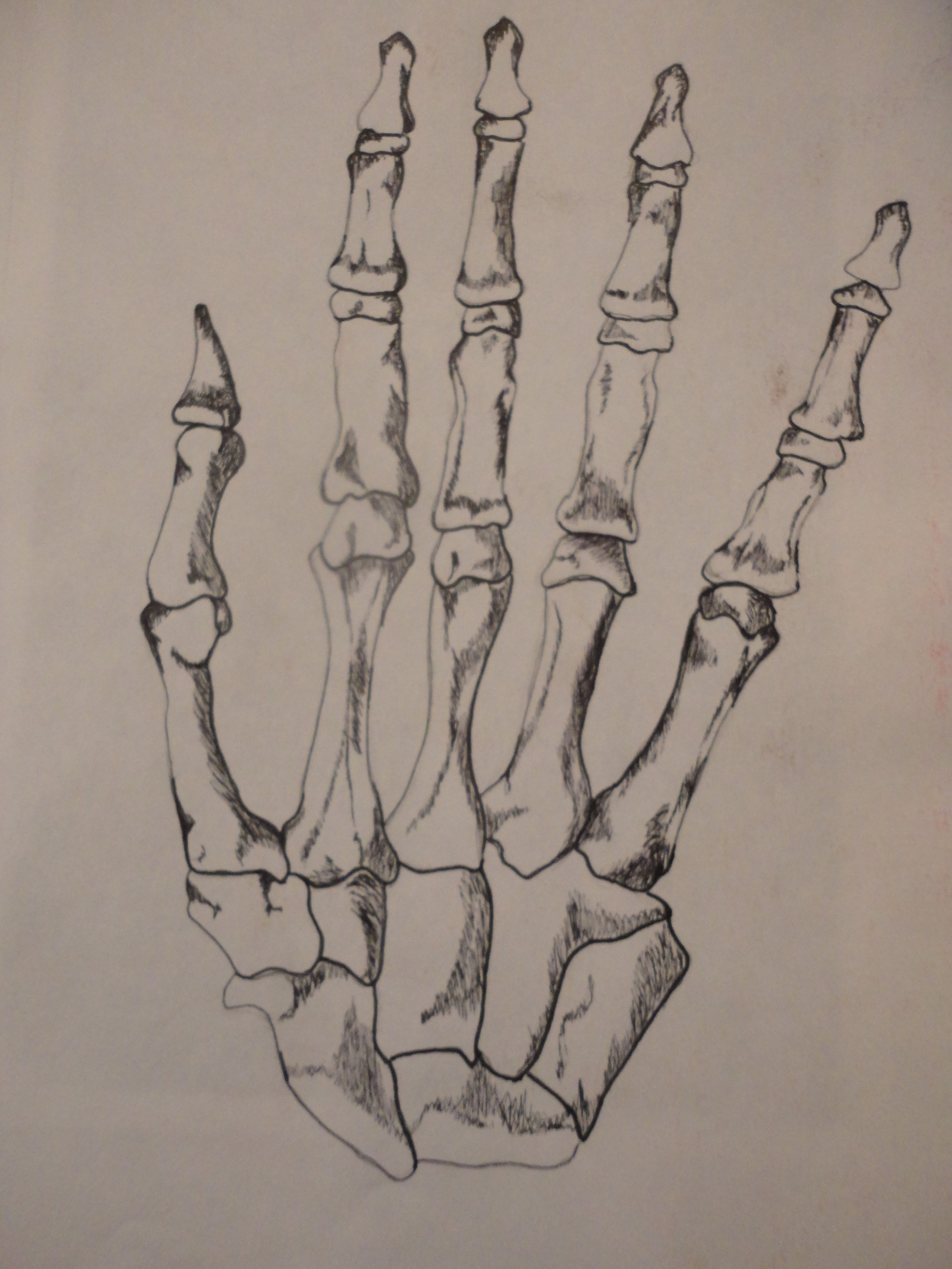 skeleton hand drawing Skeleton hands drawing, How to