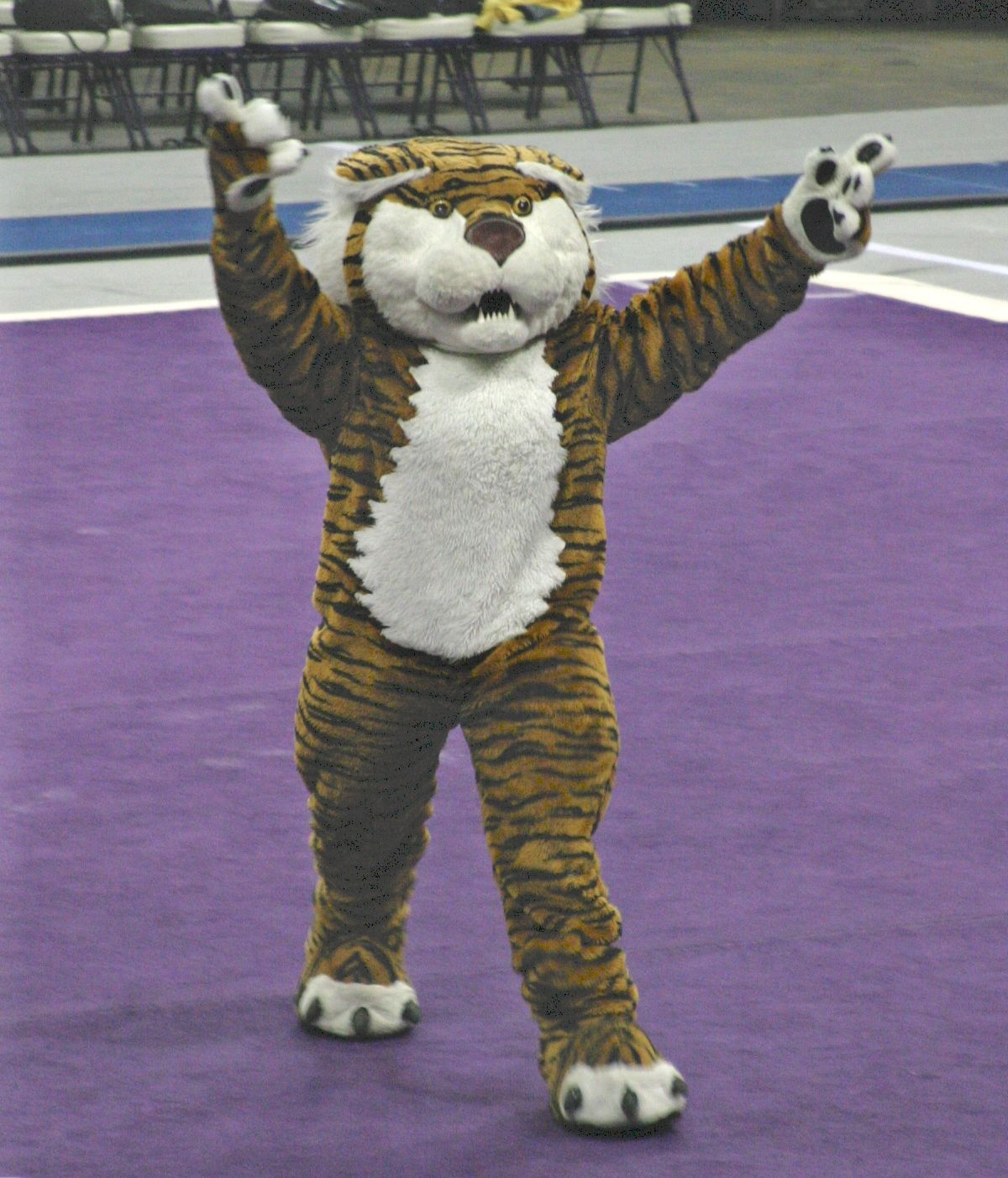 Mike The Tiger Lsu Pinterest
