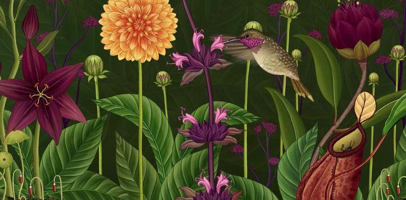 El ciclo de vida de las plantas a través de una bella y exuberante ...