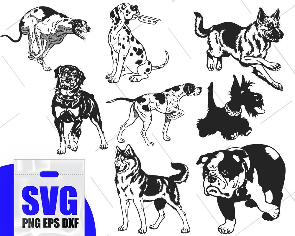 Dog Silhouette Svg Dog Decals Template Dog Svg Dogs Vector Dog Stencil Pet Silhouette Pets Pet Clipart Animals Silhouette Pet Svg Animal Clipart Puppy Clipart Scrapbook Clipart