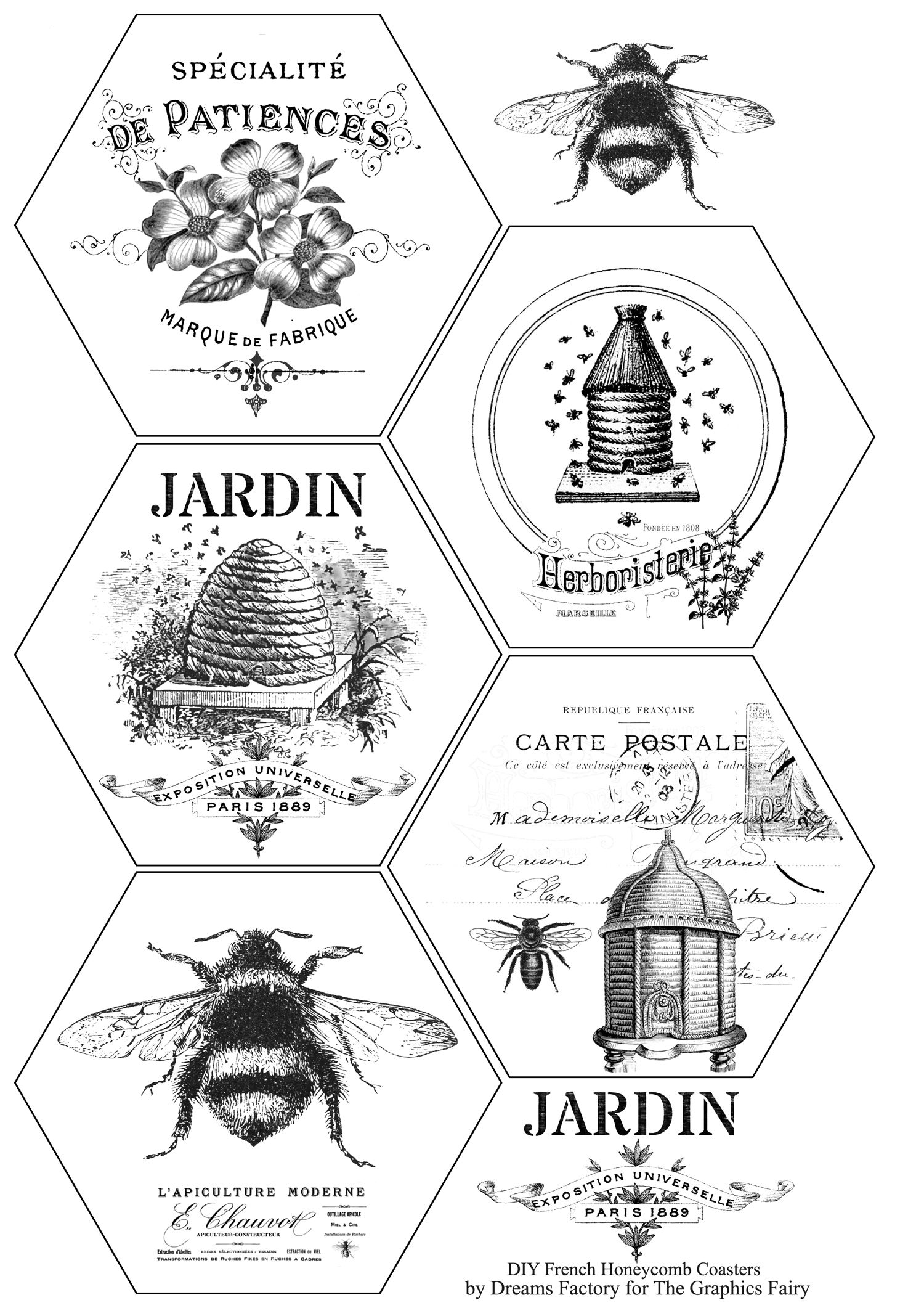 picture relating to Printable Coasters titled Do-it-yourself French Honeycomb Coasters + no cost printable Clip Artwork