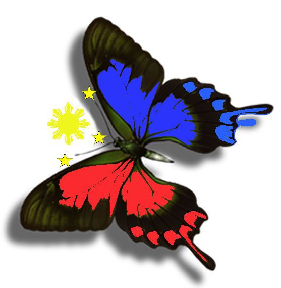 Why Does The Philippines Need The K 12 Education System Filipino Tattoos Filipino Art Philippine Flag