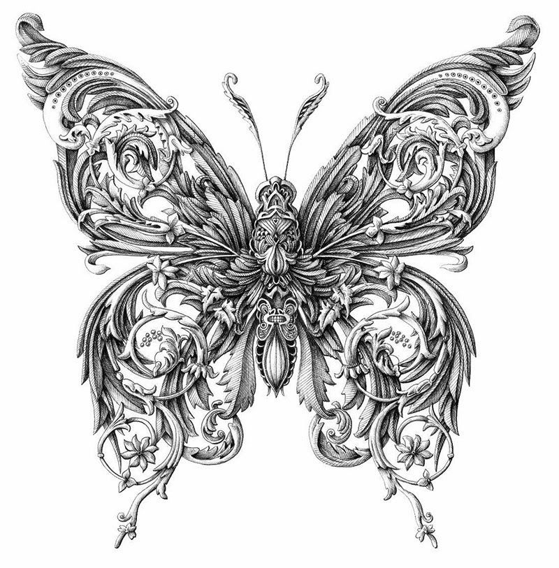 simply creative intricate insect drawings by alex konahin