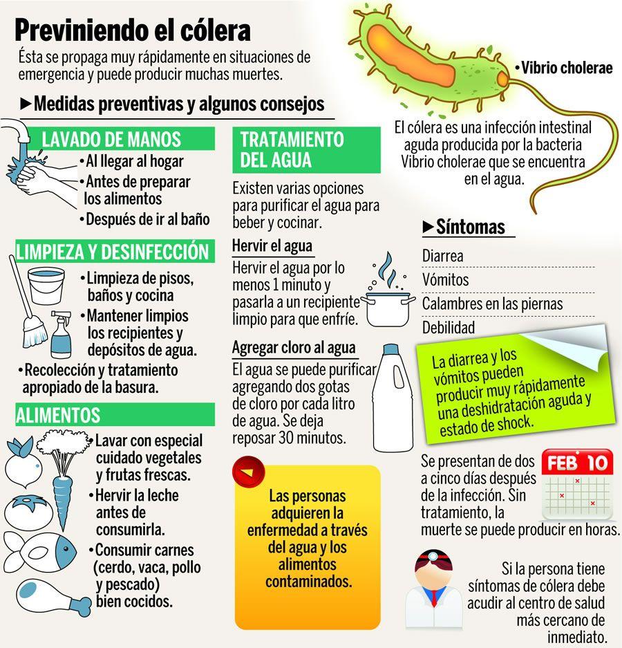 C mo prevenir el c lera infografia infographic health el c lera es causado por la bacteria - Alimentos para evitar la diarrea ...