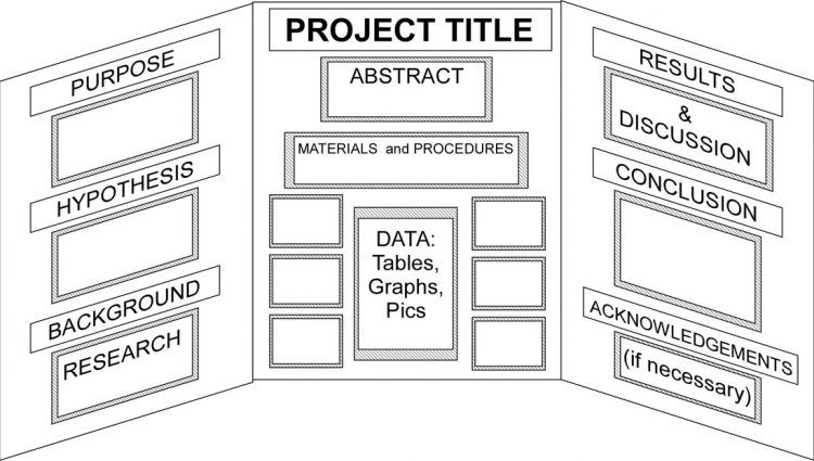 Science Project Template Science Project Board Layout